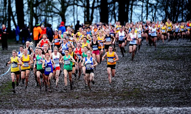 All eyes on Aarhus as Brits get set for cross-country trials